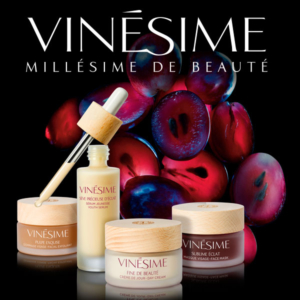vinesime-Gamme-transition